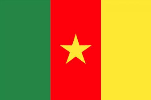 Meeting Urgence contre la dictature au Cameroun !